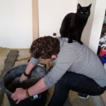 Elevating and levelling the kitchen floor. Mitsy likes to help.